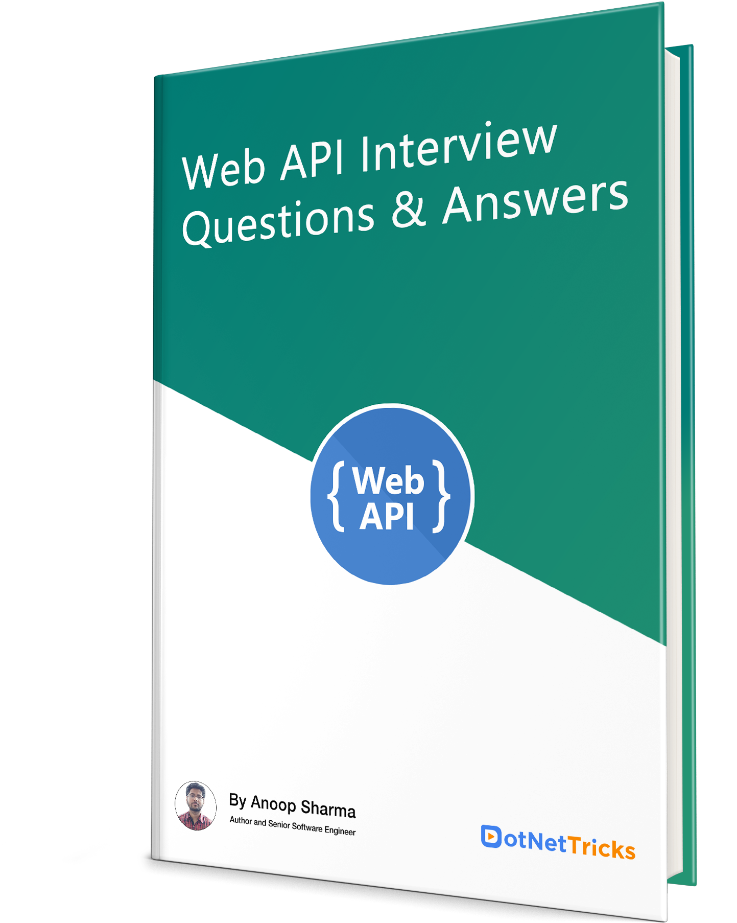 ASP.NET Web API Interview Questions eBook